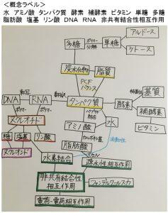 コンセプトマップの作成例