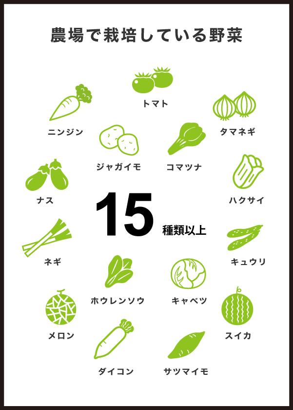 農場で栽培している野菜